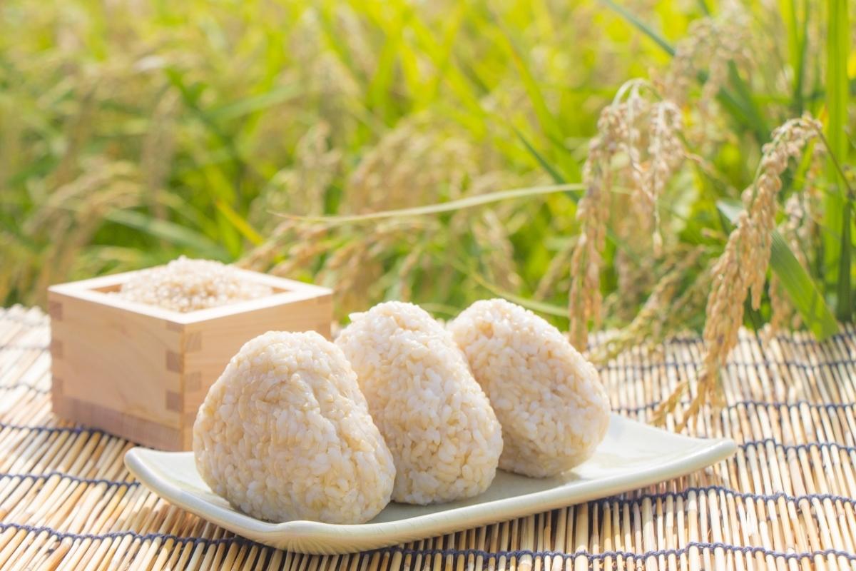玄米食,玄米,ブログ
