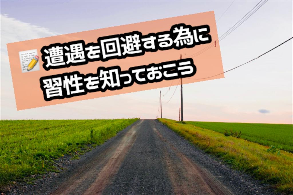 f:id:sapporo_naki:20210224172204p:image