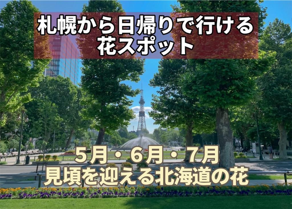 f:id:sapporo_naki:20210509073318j:image