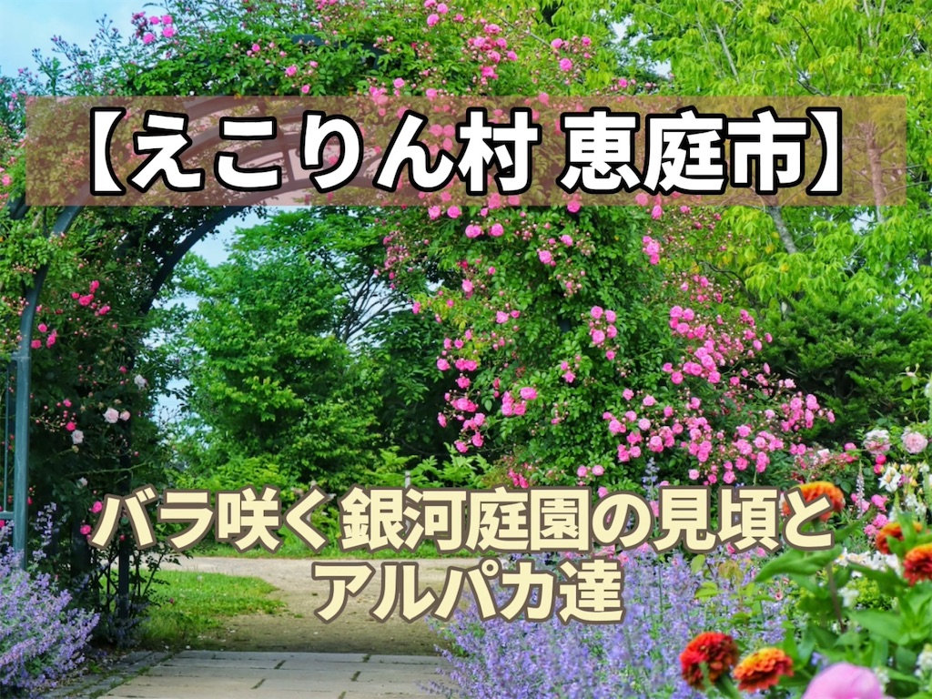f:id:sapporo_naki:20210517095337j:image