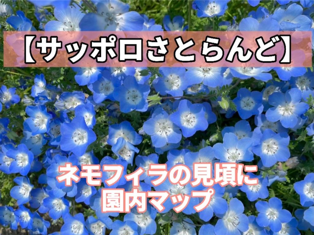 f:id:sapporo_naki:20210629161310j:image