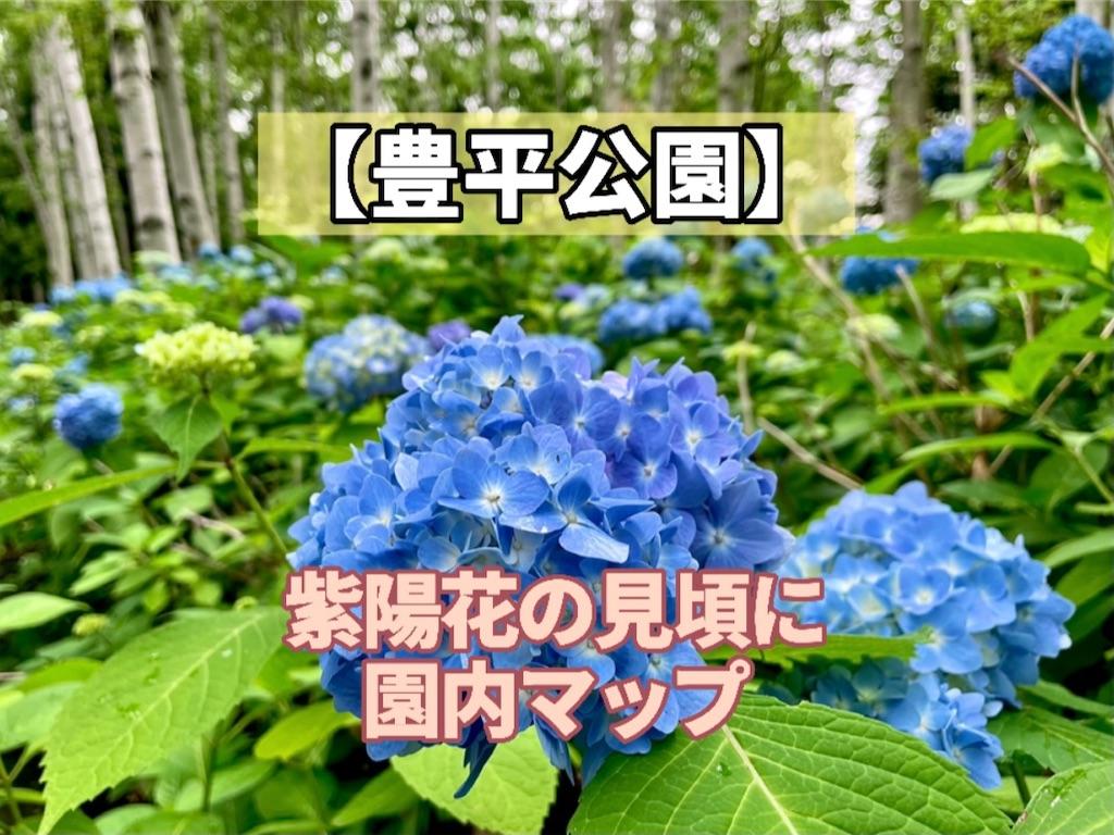 f:id:sapporo_naki:20210707093249j:image