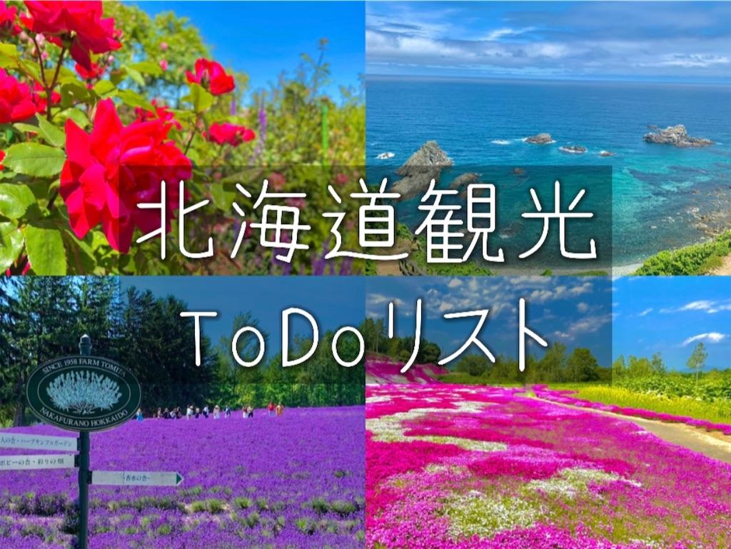 f:id:sapporo_naki:20210707111323j:image