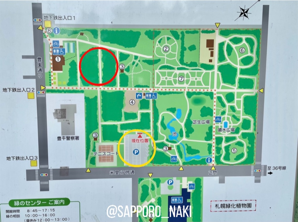 f:id:sapporo_naki:20210710094415j:image