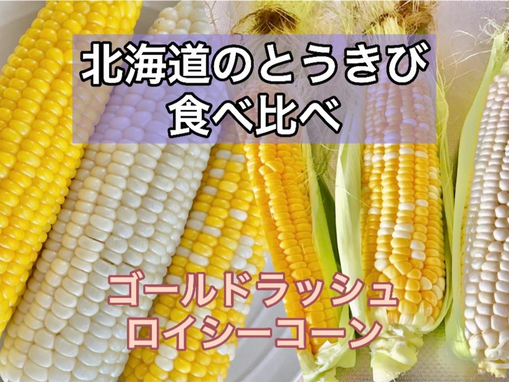 f:id:sapporo_naki:20210729103410j:image