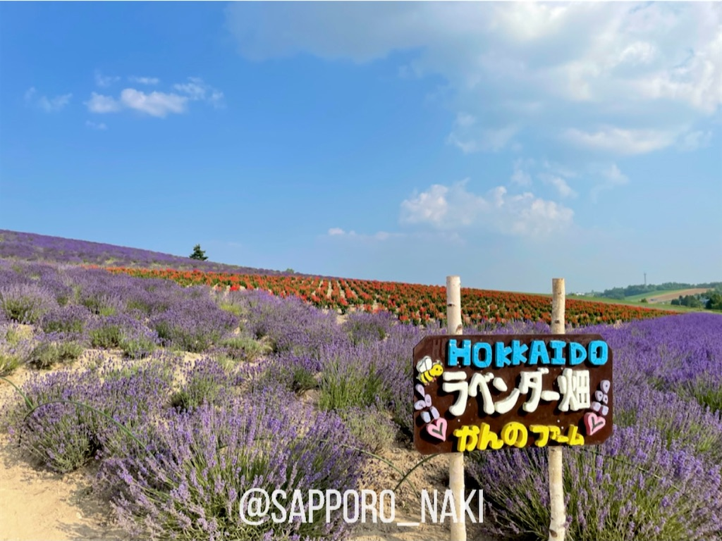 f:id:sapporo_naki:20210731131421j:image