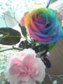 この花の存在感www