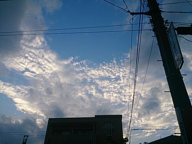 f:id:sarapan2014:20161008115321j:plain