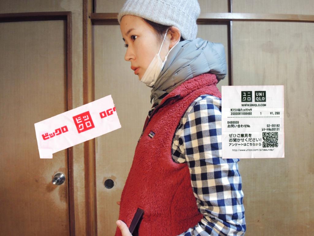 f:id:sarashimizu:20170217170037j:plain