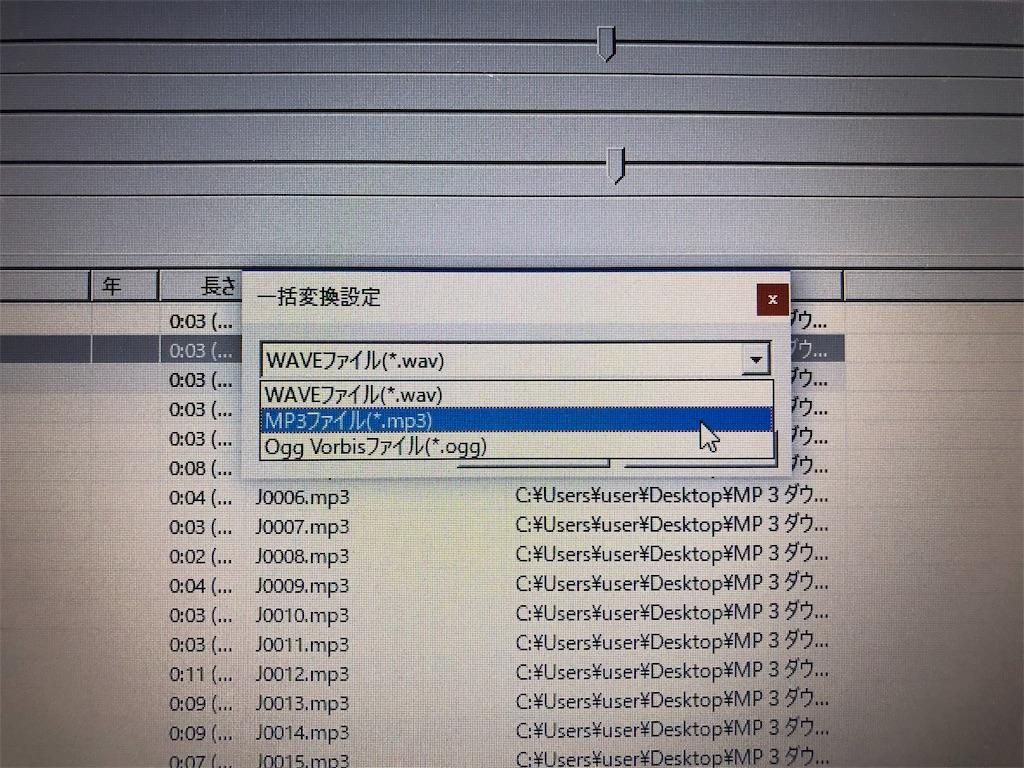 f:id:sarashizuki_dwe:20190302215207j:image