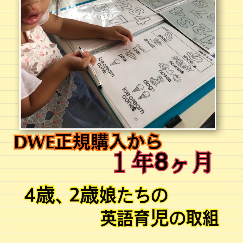 f:id:sarashizuki_dwe:20190729225153j:image