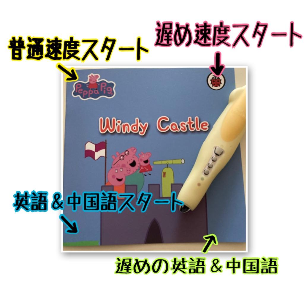 f:id:sarashizuki_dwe:20210208114547j:plain