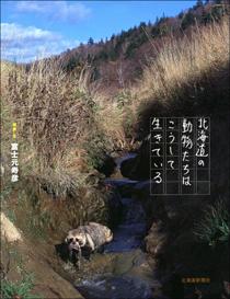 f:id:sarobetsu:20111212174832j:image