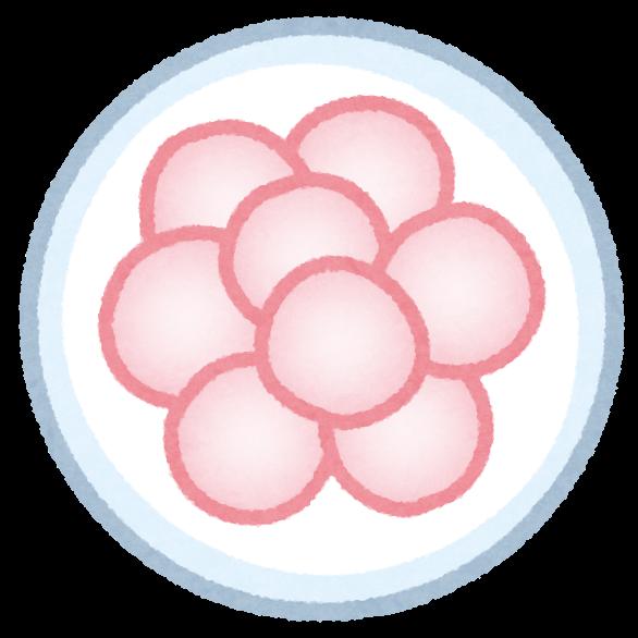 f:id:sarokatsu:20200607211546p:plain