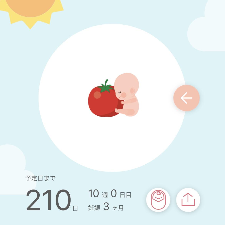 f:id:sarokatsu:20210114071311j:plain
