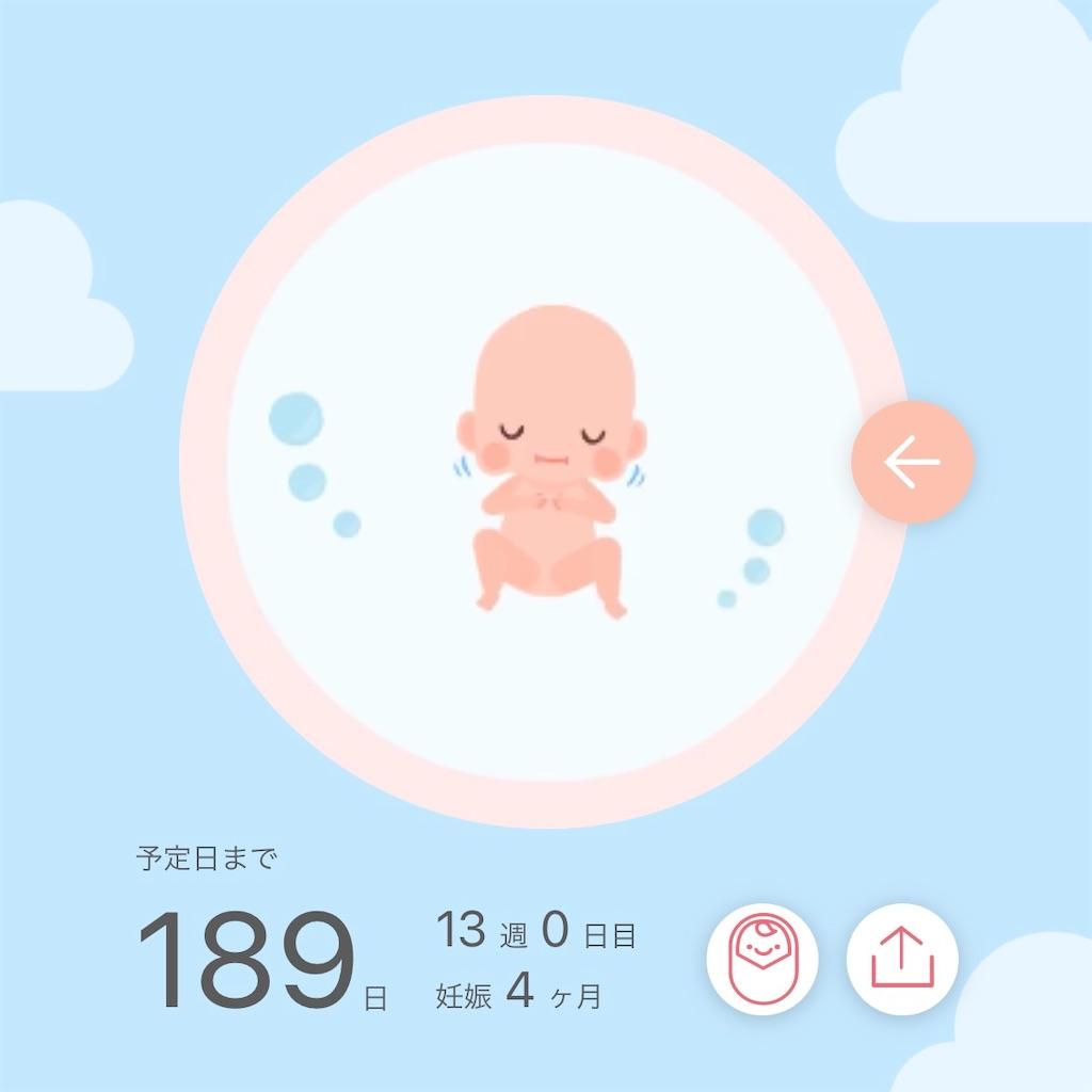 f:id:sarokatsu:20210204122759j:image