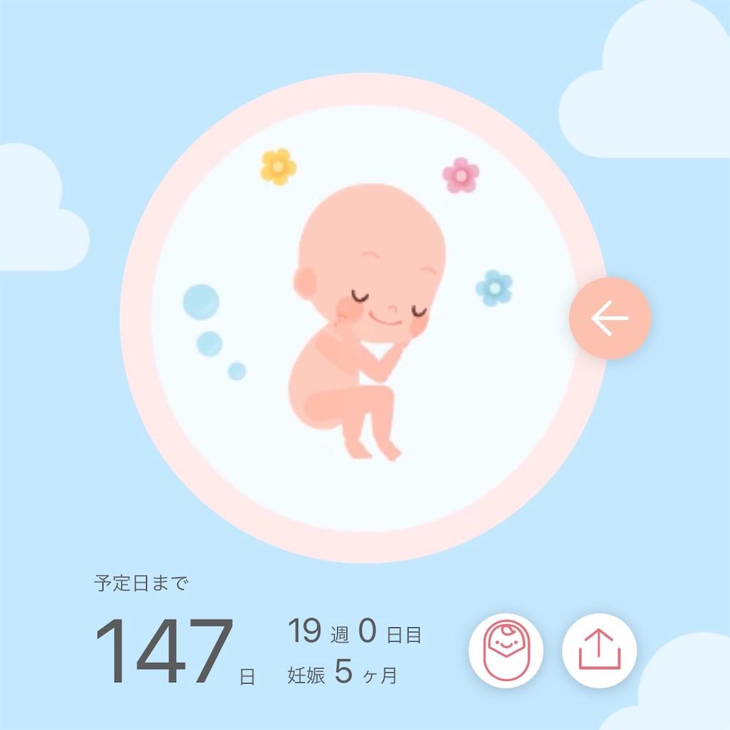 f:id:sarokatsu:20210318131830j:image