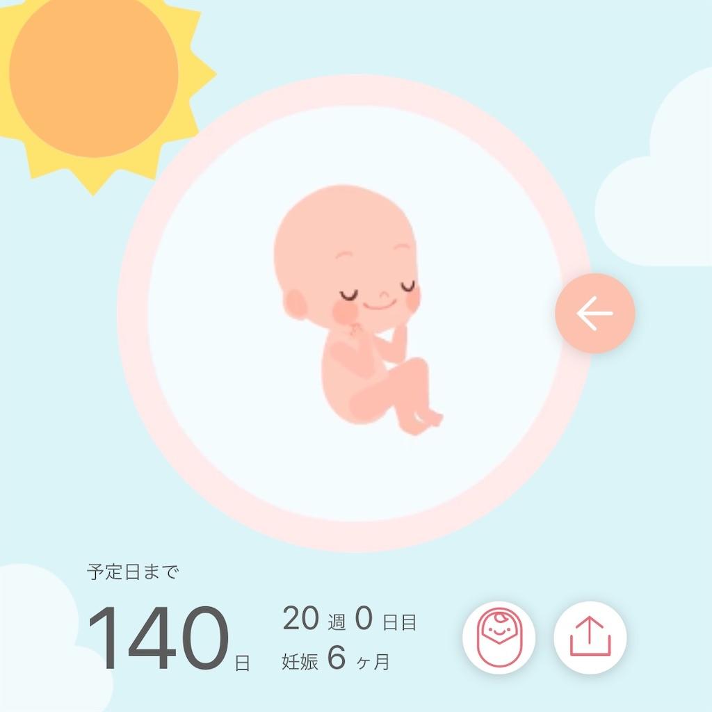 f:id:sarokatsu:20210325075601j:image