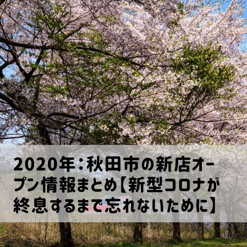 f:id:saruami33:20200413005613j:plain
