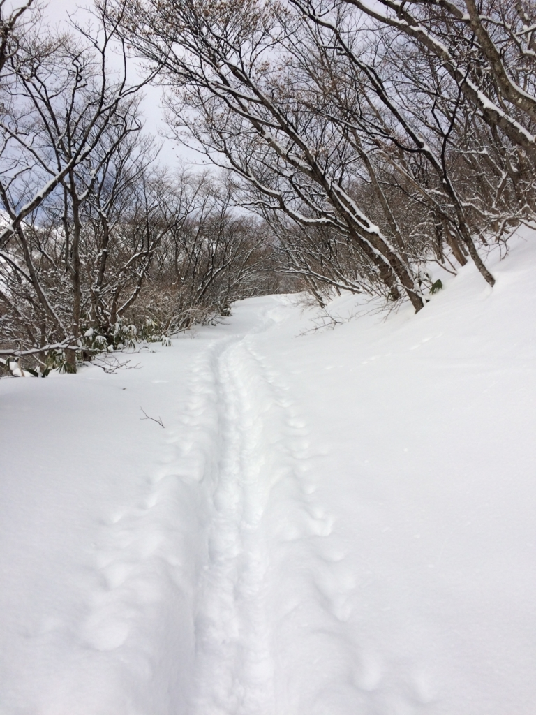 f:id:saruatsushi:20180209192644j:plain