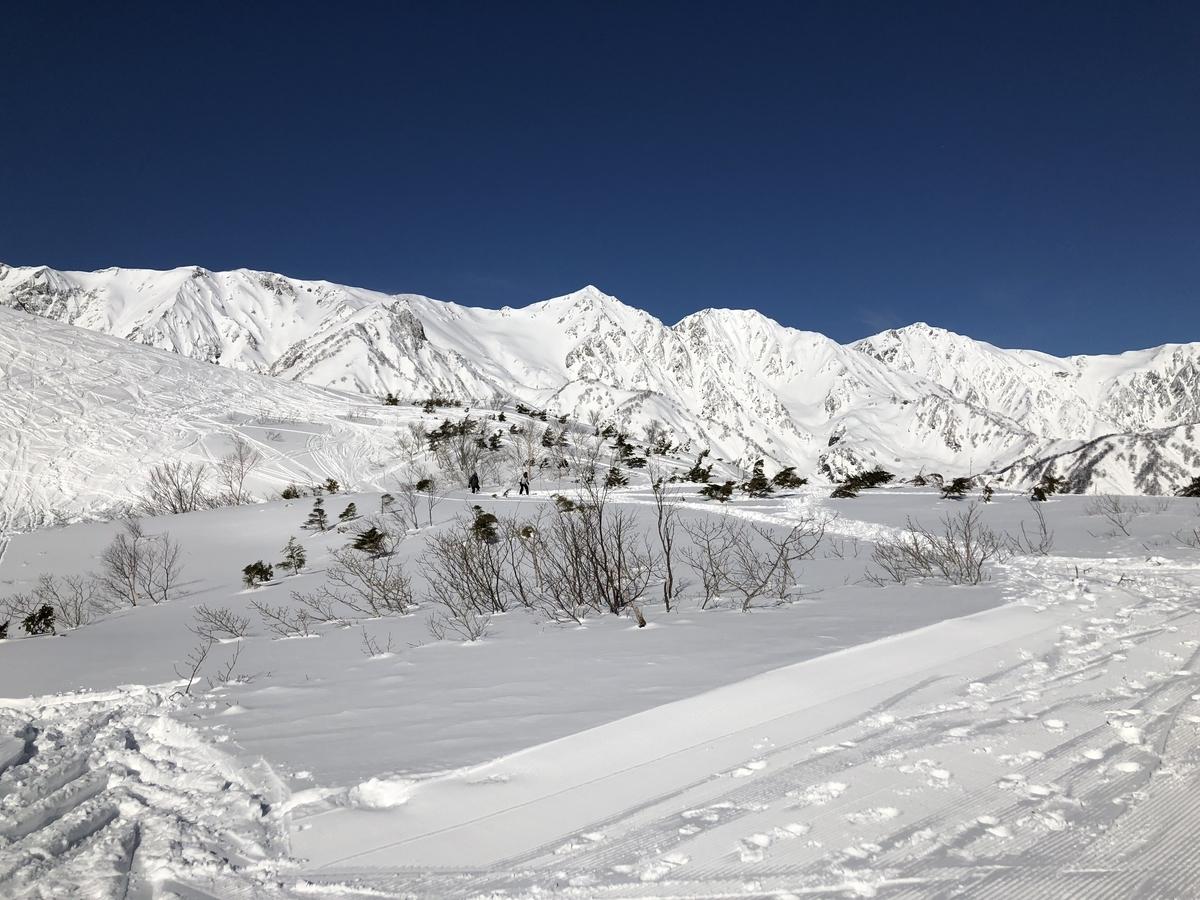 雪ありますよ!! 【登山学校実技講座 白馬編】