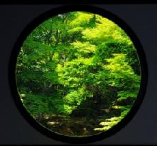 f:id:sarunokinobori:20160425201317j:plain