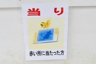 f:id:sarunokinobori:20170113150211j:plain