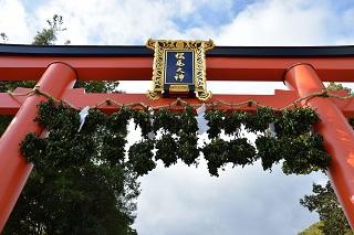 f:id:sarunokinobori:20170227200636j:plain