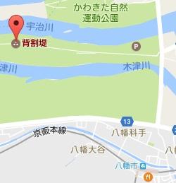 f:id:sarunokinobori:20170401223812j:plain