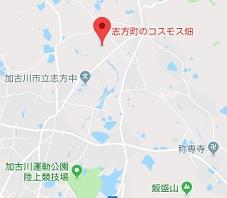 f:id:sarunokinobori:20180910225347j:plain