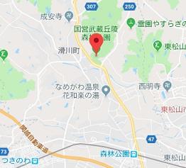f:id:sarunokinobori:20181010224935j:plain
