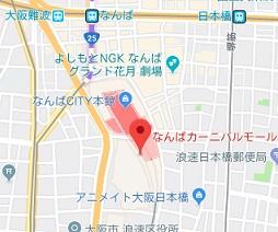 f:id:sarunokinobori:20181115224555j:plain