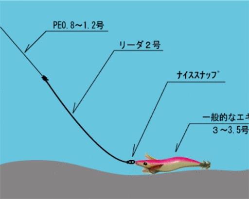 f:id:sasaki07takefumi05:20190206150739j:image