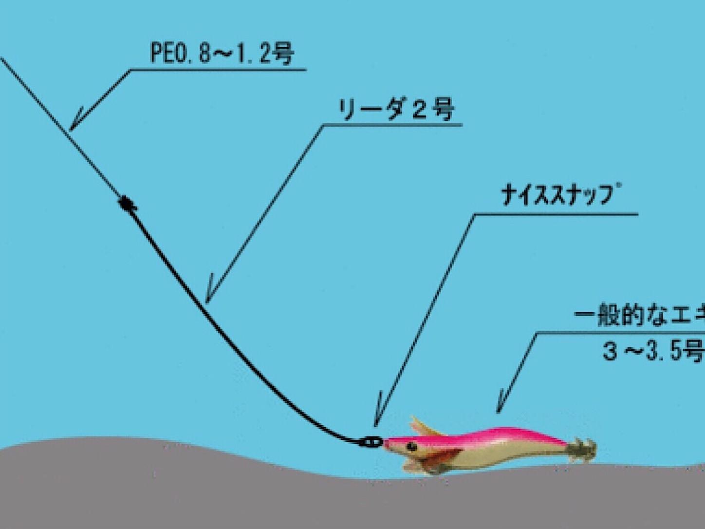 f:id:sasaki07takefumi05:20190616202202j:image