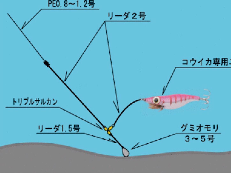 f:id:sasaki07takefumi05:20200106153635j:image