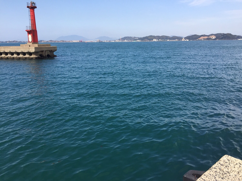 f:id:sasaki07takefumi05:20200121175529j:image