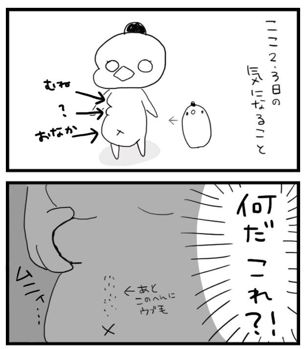 f:id:sasaki33:20160903141528j:plain