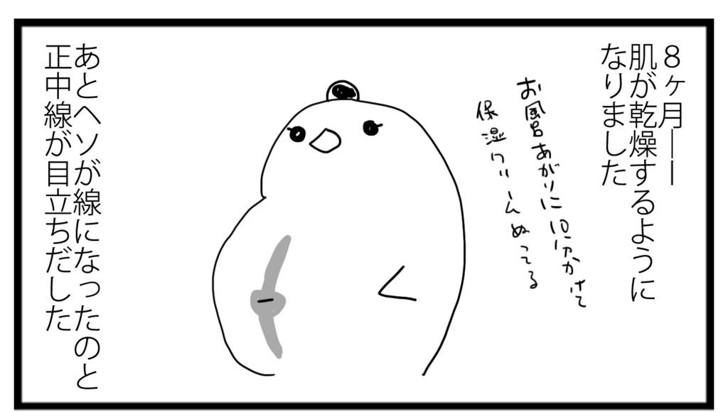 f:id:sasaki33:20161217141927j:plain