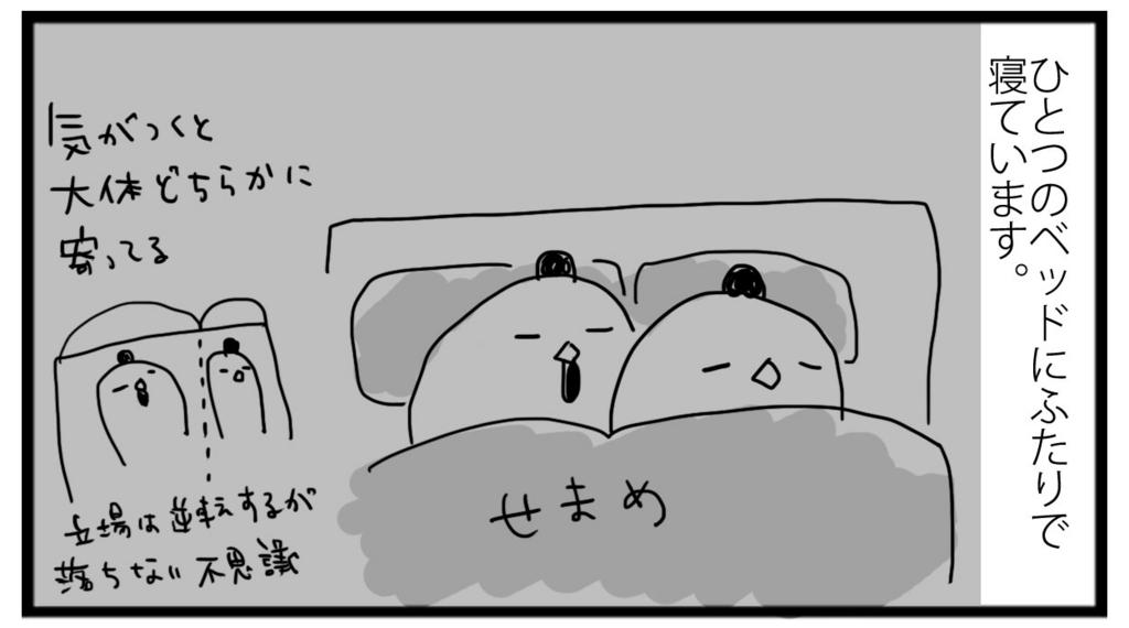 f:id:sasaki33:20170117150227j:plain