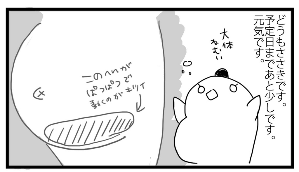 f:id:sasaki33:20170205163106j:plain