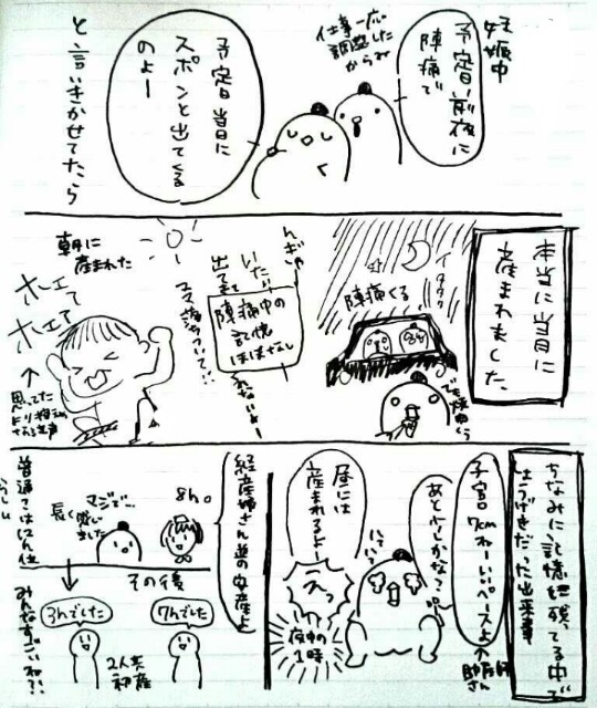 f:id:sasaki33:20170223171107j:image