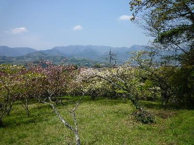 f:id:sasameyuki47:20100426121615j:image