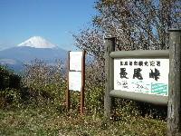 f:id:sasameyuki47:20101129121522j:image