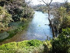 f:id:sasameyuki47:20110311135139j:image