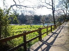 f:id:sasameyuki47:20110311140118j:image