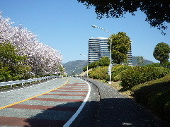 f:id:sasameyuki47:20110413095459j:image:left