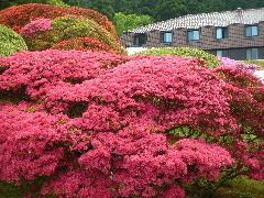 f:id:sasameyuki47:20110520094457j:image