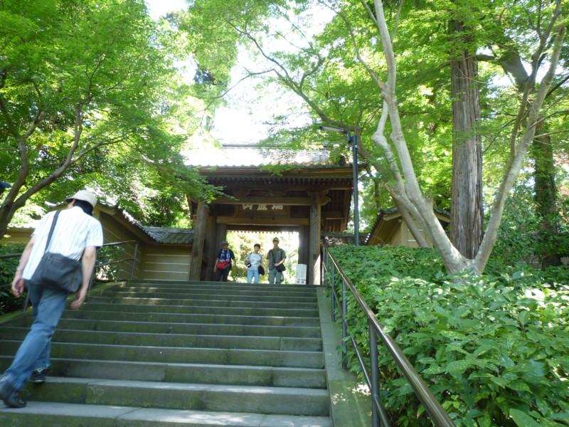 f:id:sasameyuki47:20110826105547j:image:w360