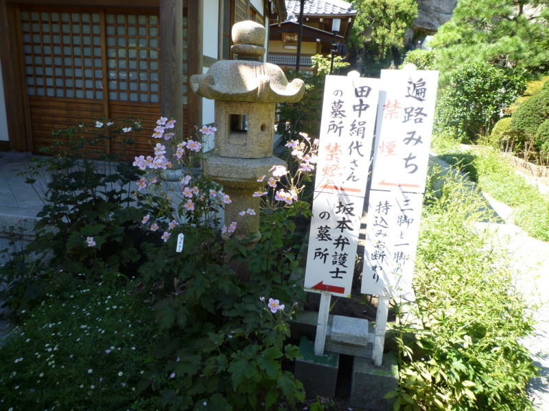 f:id:sasameyuki47:20110915122703j:image:w360:left