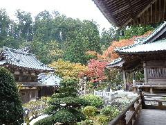 f:id:sasameyuki47:20111122111114j:image:left